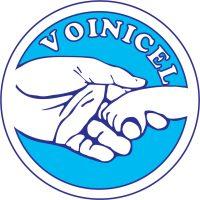 voinicel.jpg