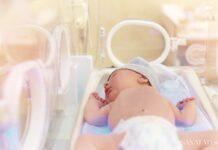 рожденные преждевременно