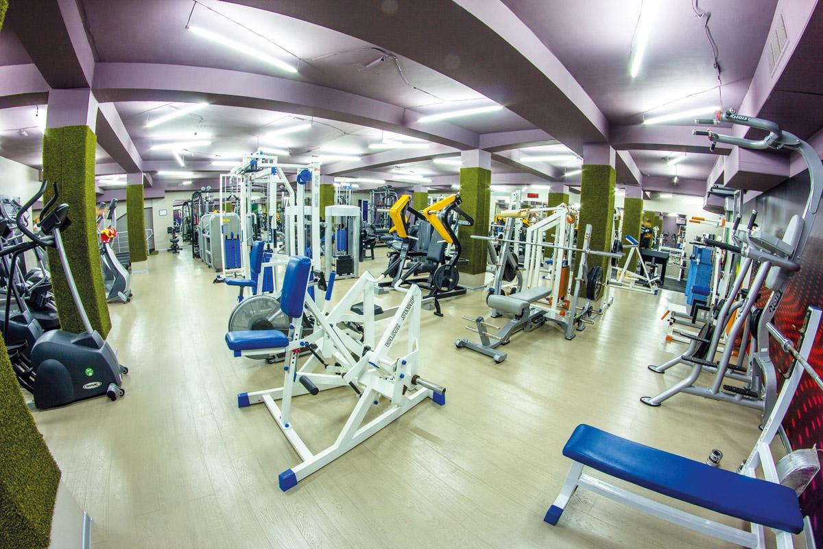 Тренажеры в Fitness Doza