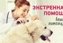 Sanatate список ветеринарных клиник
