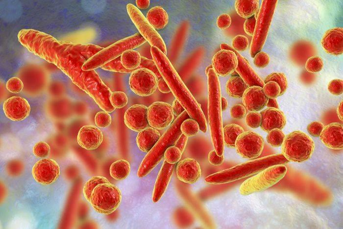 Invitro Diagnostics: Mycoplasma genitalium (ADN, calitativ)