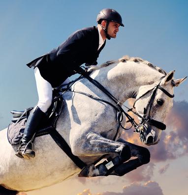 Конный клуб «Спарта»: для любителей активного отдыха