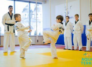 Aquaterra Sport School экзамен по тхэквандо