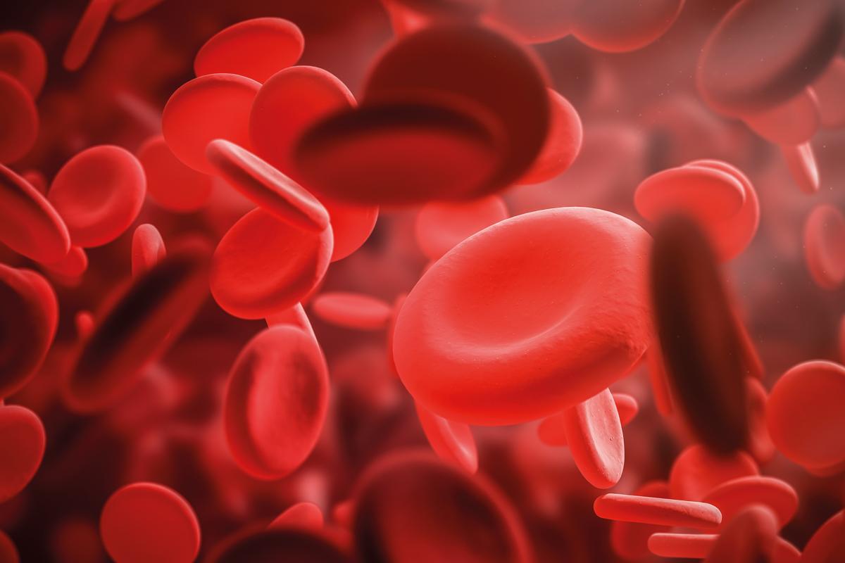 Геннадий Острофец: Гемофилия как фактор жизни