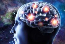 Татьяна Черниговская: Интернет, мозг и жидкий мир